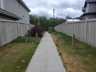 Photo 34: 3664 8 Street in Edmonton: Zone 30 House for sale : MLS®# E4253213