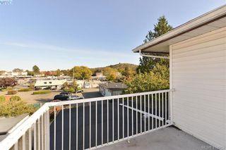 Photo 21: 3675 McIvor Ave in VICTORIA: SE Cedar Hill House for sale (Saanich East)  : MLS®# 827115