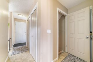 Photo 16: 49 Templeson Crescent NE in Calgary: Temple Detached for sale : MLS®# A1089563