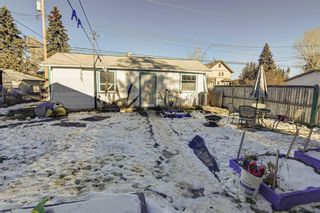 Photo 5: 8340 47 Avenue NW in Calgary: Bowness Detached for sale : MLS®# A1052532