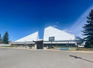 Photo 44: 10808 Maplecreek Drive SE in Calgary: Maple Ridge Detached for sale : MLS®# A1102150