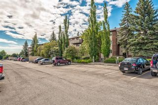 Photo 32: 432 11620 Elbow Drive SW in Calgary: Canyon Meadows Apartment for sale : MLS®# A1119842