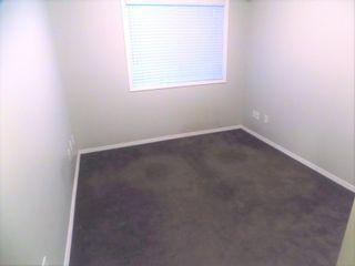 Photo 23: 104 8909 100 Street in Edmonton: Zone 15 Condo for sale : MLS®# E4246923