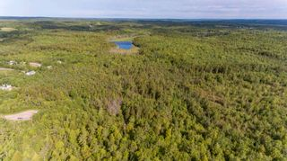 Photo 13: Lots St. Phillips Street in Bridgewater: 405-Lunenburg County Vacant Land for sale (South Shore)  : MLS®# 202115973