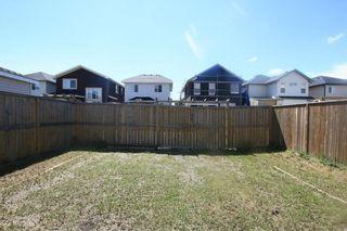 Photo 40: 88 TARALAKE Road NE in Calgary: Taradale House for sale : MLS®# C4129462