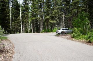 Photo 31: 162098 280 Street W: Rural Foothills County Detached for sale : MLS®# A1066551
