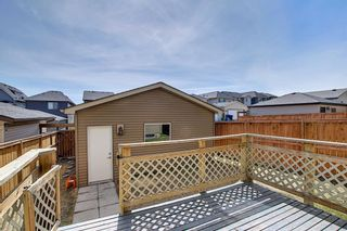 Photo 45: 55 Nolanfield Terrace NW in Calgary: Nolan Hill Detached for sale : MLS®# A1094536