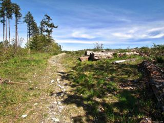 Photo 12: PCL A Curtis Rd in COMOX: CV Comox Peninsula Land for sale (Comox Valley)  : MLS®# 811298