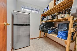 Photo 37: 92 Sandringham Close in Calgary: Sandstone Valley Detached for sale : MLS®# A1146191