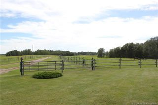 Photo 18: 41405 Range Road 231: Rural Lacombe County Detached for sale : MLS®# CA0173239