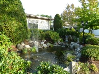Photo 17: 44 8888 151 Street in Carlingwood: Home for sale : MLS®# F1124202