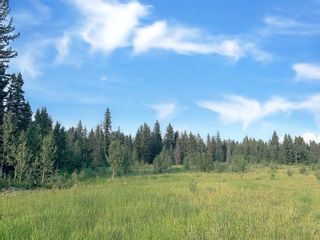 Photo 7: 31339 Rge Rd 55: Rural Mountain View County Land for sale : MLS®# A1136736