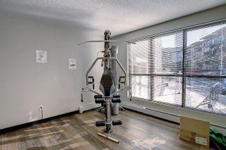 Photo 30: 312 5510 SCHONSEE Drive in Edmonton: Zone 28 Condo for sale : MLS®# E4265102