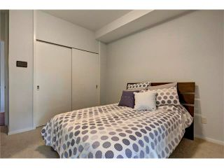 Photo 20: 105 414 MEREDITH Road NE in Calgary: Crescent Heights Condo for sale : MLS®# C4050218