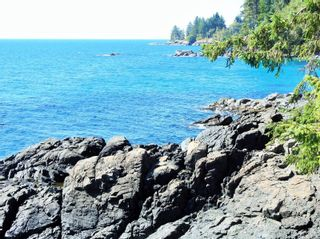 Photo 16: 2892 Fishboat Bay Rd in : Sk French Beach House for sale (Sooke)  : MLS®# 863163