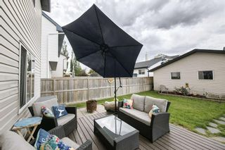 Photo 41: 234 ELGIN View SE in Calgary: McKenzie Towne Detached for sale : MLS®# A1035029