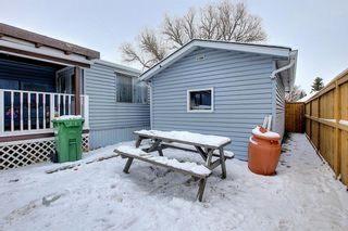 Photo 27: 128 Big Springs Drive SE: Airdrie Detached for sale : MLS®# A1065928