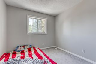 Photo 14: 38 Coverdale Way NE in Calgary: Coventry Hills Detached for sale : MLS®# A1120881