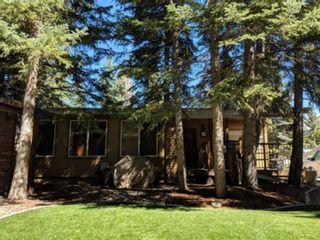 Photo 17: 4 200 4 Avenue SW: Sundre Detached for sale : MLS®# A1046448