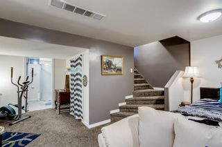 Photo 16: 3315 56 Street NE in Calgary: Temple Row/Townhouse for sale : MLS®# A1132139
