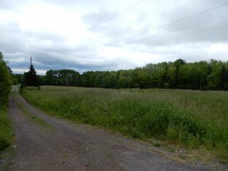 Photo 8: River John Road in Scotch Hill: 108-Rural Pictou County Vacant Land for sale (Northern Region)  : MLS®# 202115411
