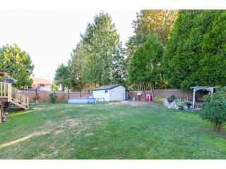 Photo 13: 2941 267B Street in Langley: Home for sale : MLS®# F1446771