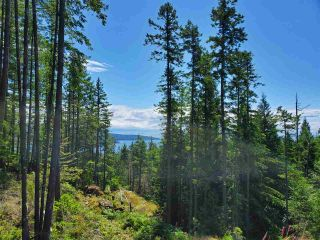 "Photo 4: Lot 49 FLINT Road: Keats Island Land for sale in ""10 Acres"" (Sunshine Coast)  : MLS®# R2460996"