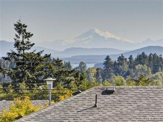 Photo 19: 2595 Wilcox Terr in VICTORIA: CS Tanner House for sale (Central Saanich)  : MLS®# 742349