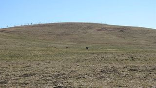 Photo 8: SE 35-20-2W5: Rural Foothills County Residential Land for sale : MLS®# A1101395
