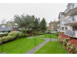 """Photo 18: 102 5375 205 Street in Langley: Langley City Condo for sale in """"GLENMONT PARK"""" : MLS®# R2053882"""