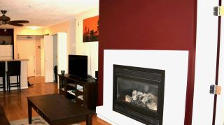 Photo 5: 207 2768 CRANBERRY DRIVE in Vancouver: Kitsilano Condo for sale (Vancouver West)  : MLS®# R2435190