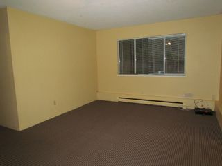 "Photo 4: BSMT 32671 HAIDA DR in ABBOTSFORD: Central Abbotsford Condo for rent in ""FAIRFIELD ESTATES"" (Abbotsford)"