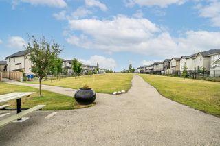 Photo 37: 60 Skyview Shores Gardens NE in Calgary: Skyview Ranch Detached for sale : MLS®# A1132367