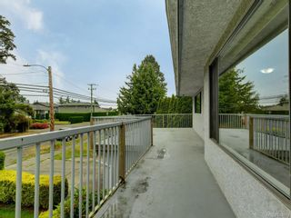 Photo 18: 4174 Glanford Ave in Saanich: SW Glanford House for sale (Saanich West)  : MLS®# 843773