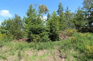 Photo 16: Lot 34 Goldstream Heights Dr in : ML Shawnigan Land for sale (Malahat & Area)  : MLS®# 878268