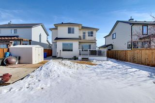 Photo 47: 260 SPRINGMERE Way: Chestermere Detached for sale : MLS®# A1073459