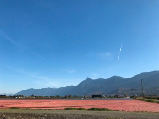 Main Photo: 8450 GIBSON Road in Chilliwack: East Chilliwack Agri-Business for sale : MLS®# C8037456