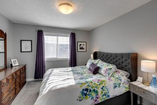Photo 29: 919 Nolan Hill Boulevard NW in Calgary: Nolan Hill Row/Townhouse for sale : MLS®# A1141802