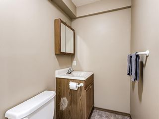 Photo 34: 25 Martha's Haven Manor NE in Calgary: Martindale Detached for sale : MLS®# A1101906