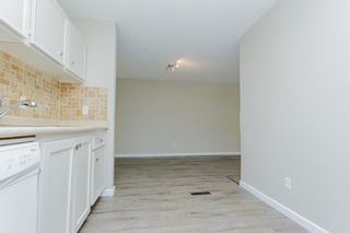 Photo 23: 31 2204 118 Street NW in Edmonton: Zone 16 Carriage for sale : MLS®# E4249147