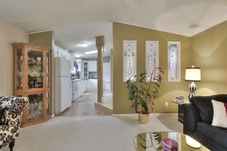 Photo 17: 52117 RGE RD 53: Rural Parkland County House for sale : MLS®# E4246255