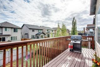 Photo 32: 56 BRIGHTONWOODS Grove SE in Calgary: New Brighton Detached for sale : MLS®# A1026524