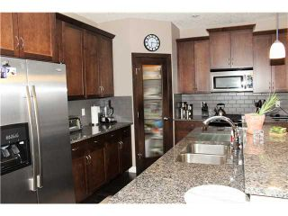 Photo 4: 111 HANSON Drive: Langdon Residential Detached Single Family for sale : MLS®# C3601110
