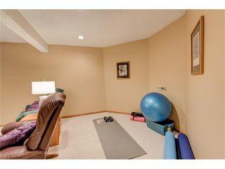 Photo 32: 85 SUNMEADOWS Crescent SE in Calgary: Sundance House for sale : MLS®# C4115750