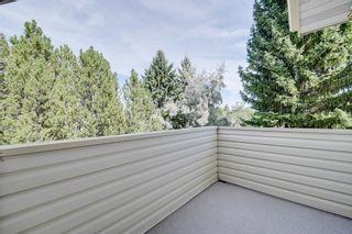 Photo 24: 256 BURTON Road in Edmonton: Zone 14 House for sale : MLS®# E4262280
