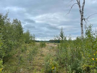 Photo 24: 24021 Twp Rd 620: Rural Westlock County House for sale : MLS®# E4264230