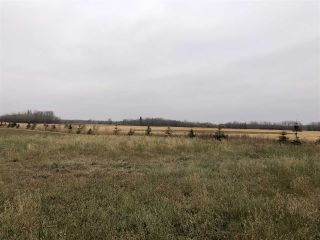 Photo 14: TWP RD 583 Range Rd 271: Rural Westlock County Rural Land/Vacant Lot for sale : MLS®# E4218433