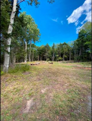Photo 3: 4488 Little Harbour Road in Little Harbour: 108-Rural Pictou County Vacant Land for sale (Northern Region)  : MLS®# 202118097