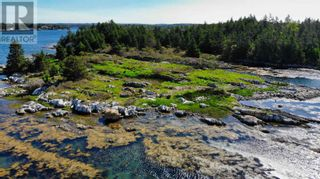 Photo 12: Lot Maiden Hair Island in Lahave Islands: Vacant Land for sale : MLS®# 202114713
