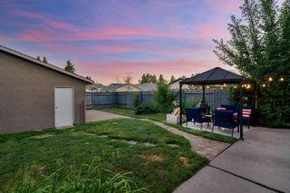 Photo 35: 6703 24 Avenue NE in Calgary: Pineridge Detached for sale : MLS®# A1124437